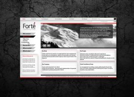 Forte Consultancy Home Page by kurtoglu