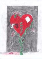 Heart by goina