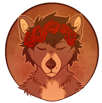 Roses by Myekaa