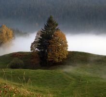 Schallenberg in the fog 1 by MarcZingg
