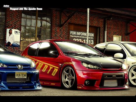 Peugeot 206 Apache Team by Active-Design