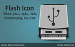 Flash Icon by borislav-dakov