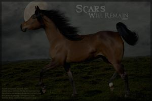 Scars Will Remain by FamousShamus109
