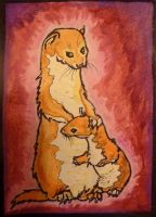 Least Weasel ACEO by Redwall151