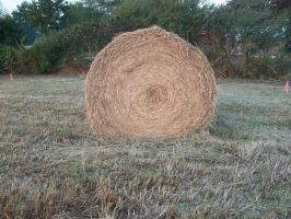 Halloween Hay stack 1 by adivawoman