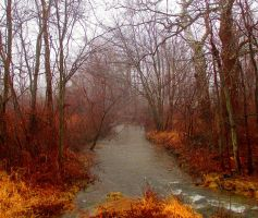 Along the Stream by Introverses