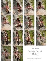Donator Pack 2a Amilee Warrior by jagged-eye