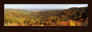 Autumn in the Shenandoah by Mashuto