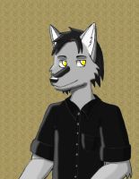 Keda GC Style by Anime-Wolf-08