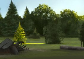 Photoshop in the forest in Paris 2 by Mogura-no-kanji
