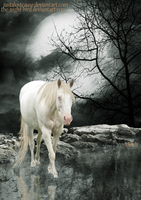 R E F L E C T I O N . One by MiddysGraphics