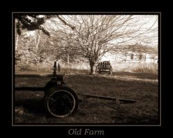 Old Farm by tranquil-anarchy