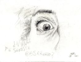 eye 2011 by OrgitaSucubita