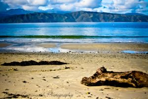 Wellington beach by natzcv