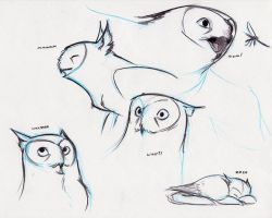 Owl Griffin expressions by RobtheDoodler