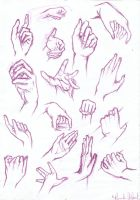 Anatomy Study: HANDS by YuuyuMori