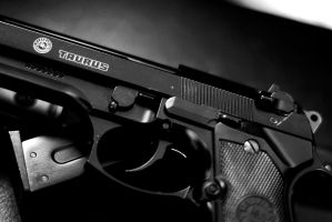 Taurus Arms by sjphoto
