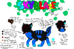 Skyblazes Ref Sheet 2013! by iW-O-L-F