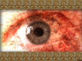 Eye and Faces by frotton