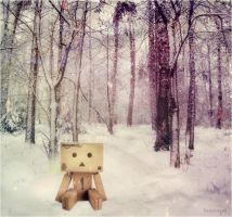 photomanipulation Danbo. by lovenewwyork