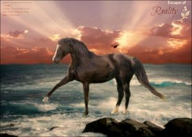 Escape of reality...- Horse manipulation by Tumbling-Star