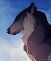 Head in the Clouds by Naviira