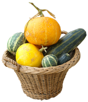 pumpkin basket png by gd08