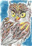 Oil Pastels: Owl by kxeron