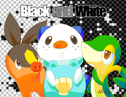Pokemon Black and White by Pluffers