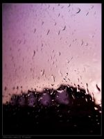 After rain comes.. by Dynnnad