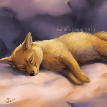 Dozing Dingo - SpeedPaint by GoldenDruid