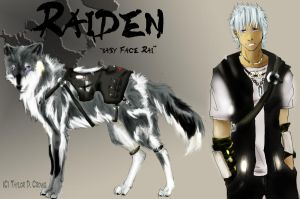 Raiden plan out by TheRockyCrowe