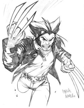 Wolverine cartoony sketch by CarlosGomezArtist