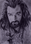 Thorin Oakenshield by MikkoChan