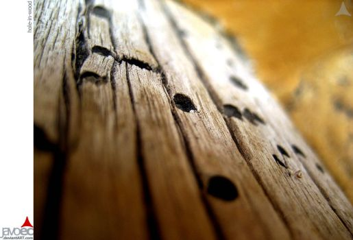 hole-in-wood by javoec