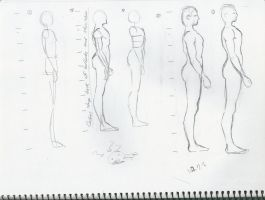 Body structure practice 3 by sophiaan0