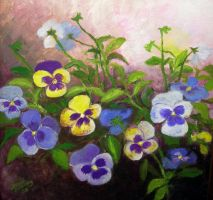 colorful pansies by Hydrangeas