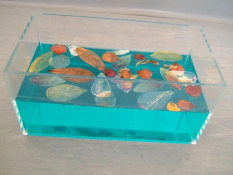 Mould Tank by lucylucy