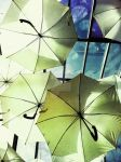 Umbrellas by glaros