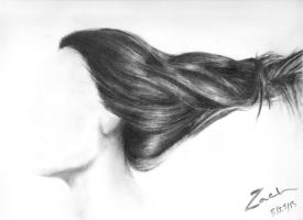 Hair Practice (Old) by zarbor