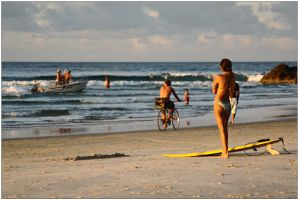 Byron beach life 1 by wildplaces