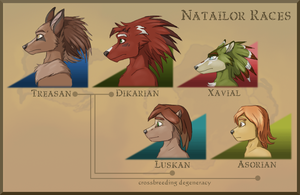 Natailor Races by BUGHS-22