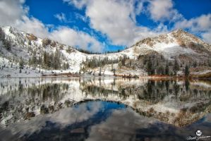 Reflection Off of the Early Winter Water by mjohanson