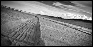 Cape Hatteras : Tracks by jkemp