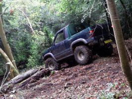 Pick-up truck at the woods by bergunty