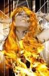 phoenix on fire by iliumleather