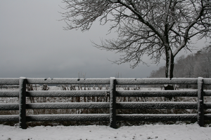 Winter Fence by Moosezoomin