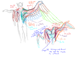 Iz and El Anatomy Study by lover-of-the-Drow