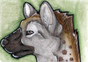 ATC: Spotted Hyena 2013 by AirRaiser