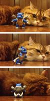 Blastoise!! (and cat) by lyrese